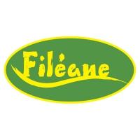 logo_fileane